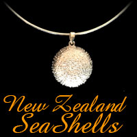 New Zealand Sea Shell Range